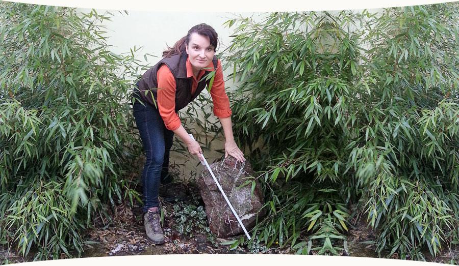 Gartensinne